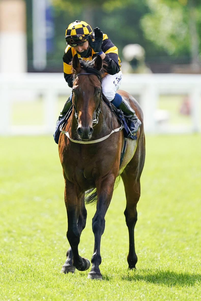 BRITISH PREVIEW: Say Hello to July Cup winner