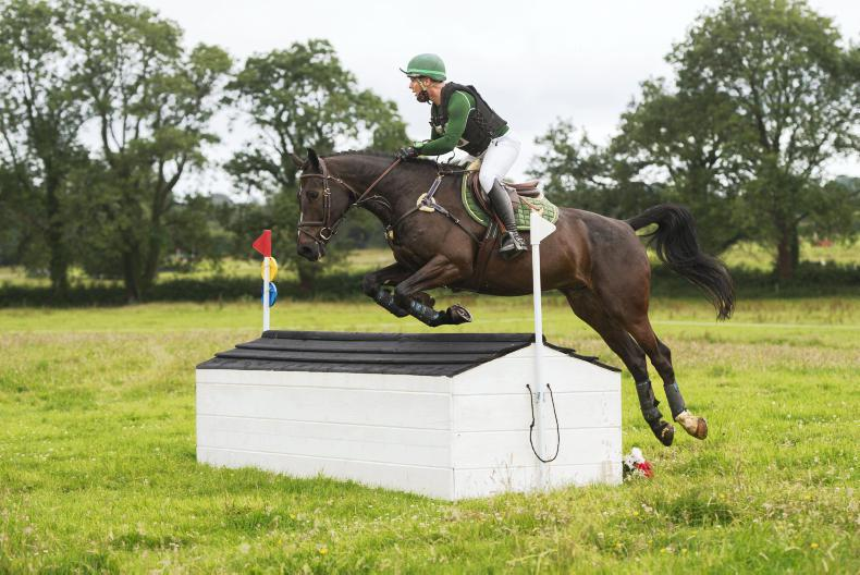 EVENTING: Winning eventing debut for Hollypark Neptune