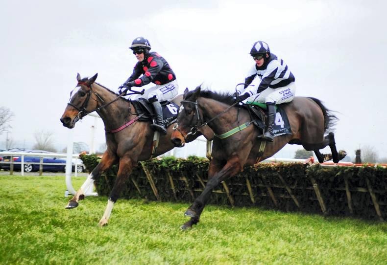 DOWN ROYAL: Glenquest gallops on to National scene
