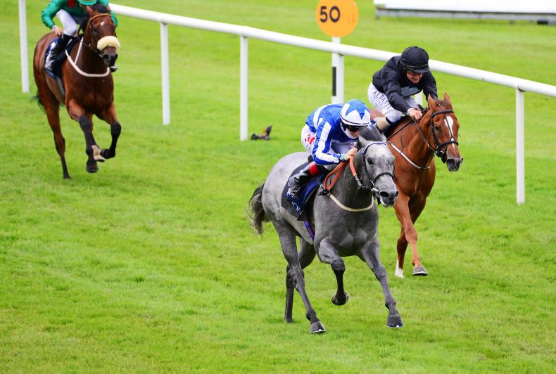 NAAS SUNDAY: Easterby raider powers home