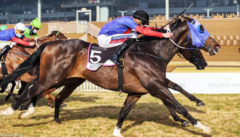 SOUTH AFRICA: Warrior's Rest crowns a Tarry double