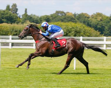 Mohaather takes Summer success on Ascot return