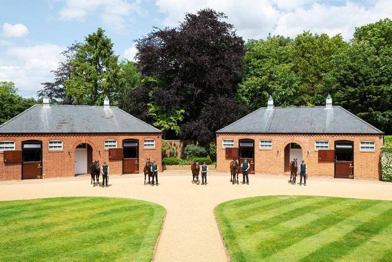 JUDDMONTE FEATURE: Leading global thoroughbred breeders