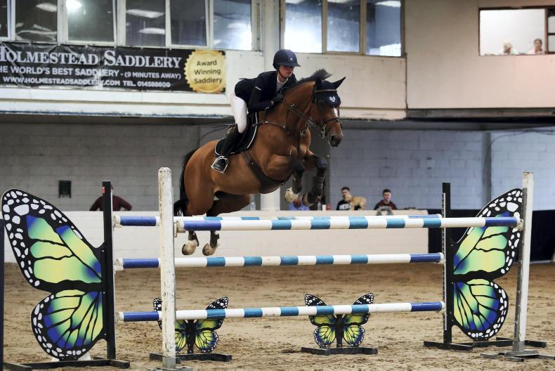 SHOW JUMPING: Fitzpatrick does it again with Verdict
