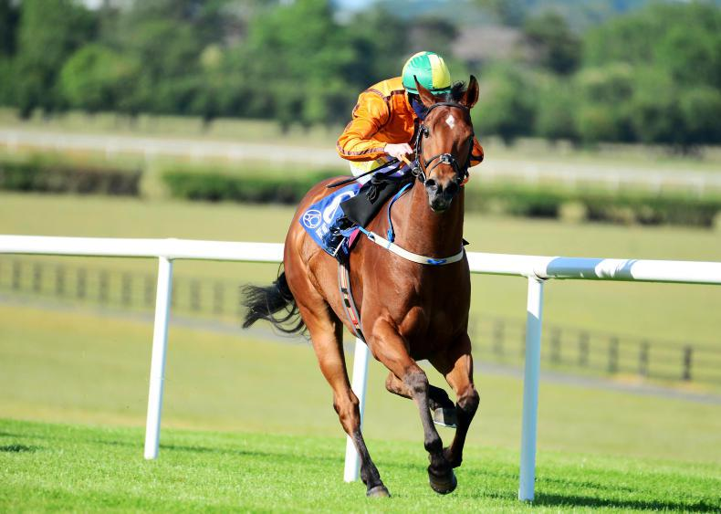 Nunthorpe on the agenda for Sceptical