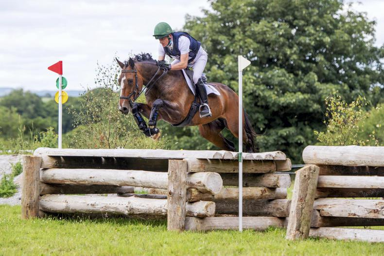 EVENTING: Shannondale Icarus delivers for Bloomer