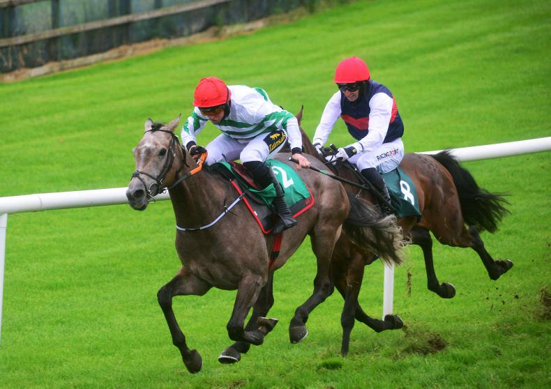 DOWNPATRICK WEDNESDAY: Four the magic number for Elliott