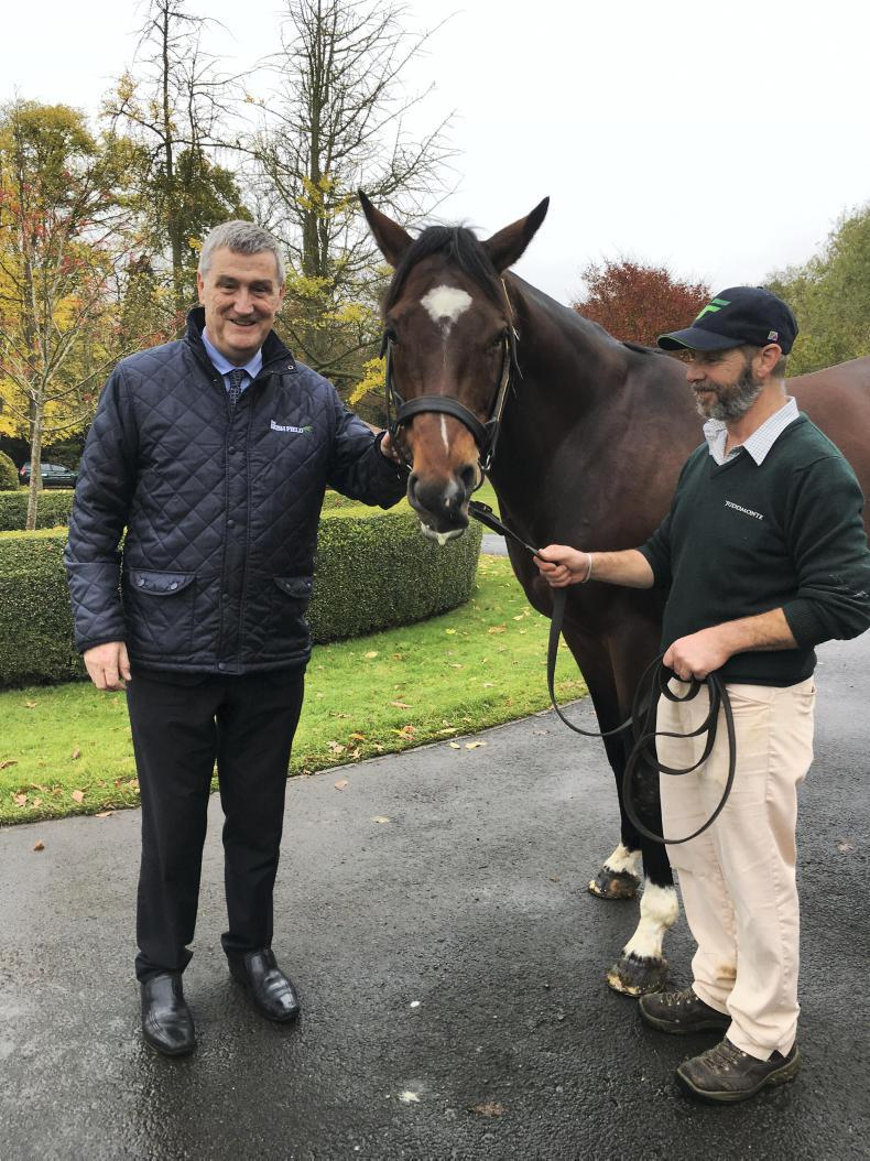 JUDDMONTE FEATURE: Sensational