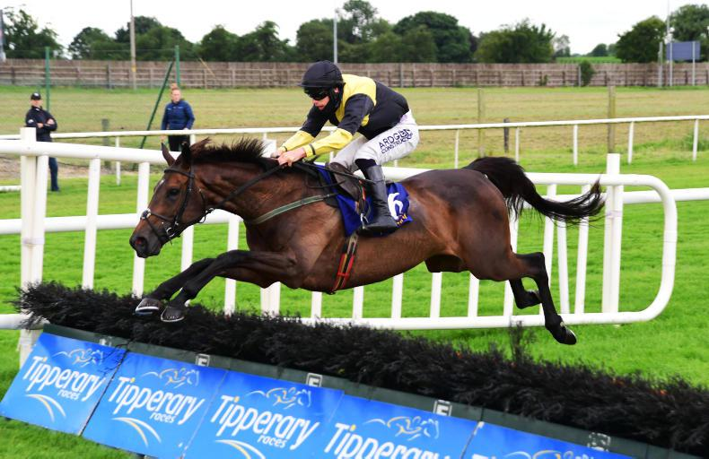TIPPERARY SUNDAY PREVIEW: Celebrations for Ahern if Slainte can do the double