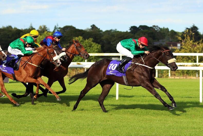 CURRAGH SUNDAY PREVIEW: Take a chance on the high-class Ridenza