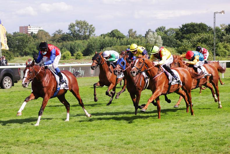 GERMANY: In Swoop shows his classic stamina