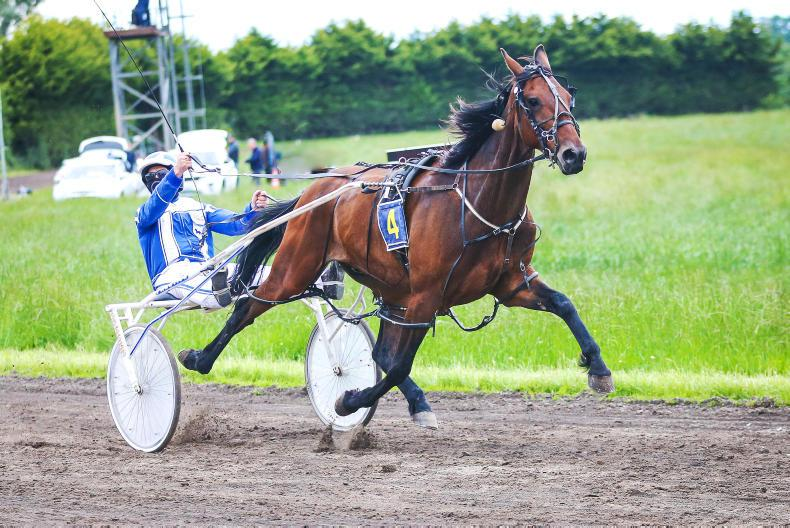 HARNESS RACING: Timlins take driving double