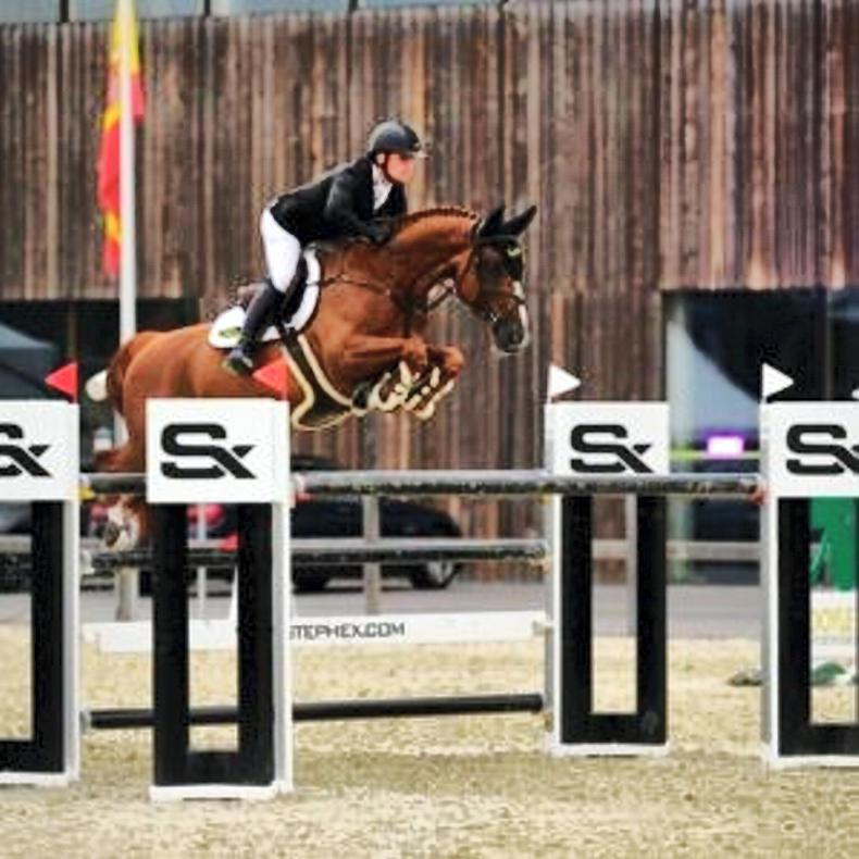 SHOW JUMPING: Howley wins Belgian Grand Prix