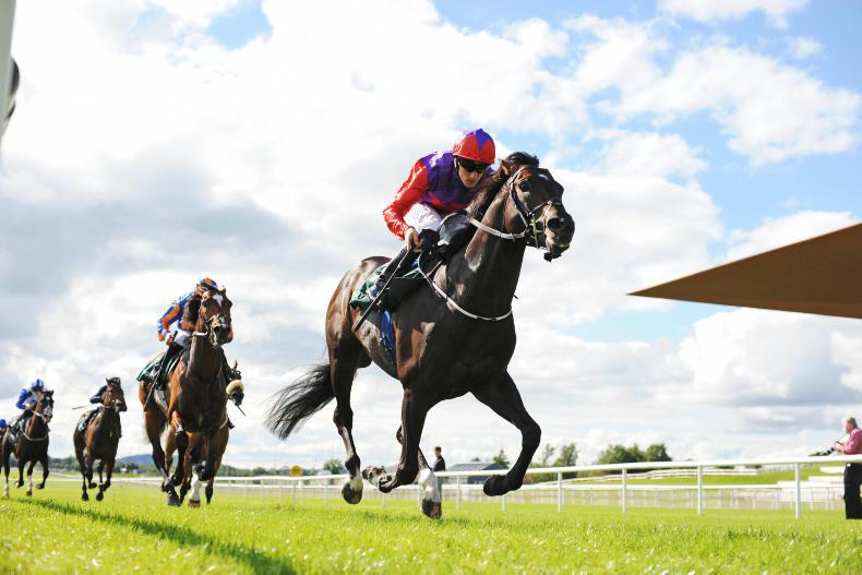 Romanised camp eye Deauville double