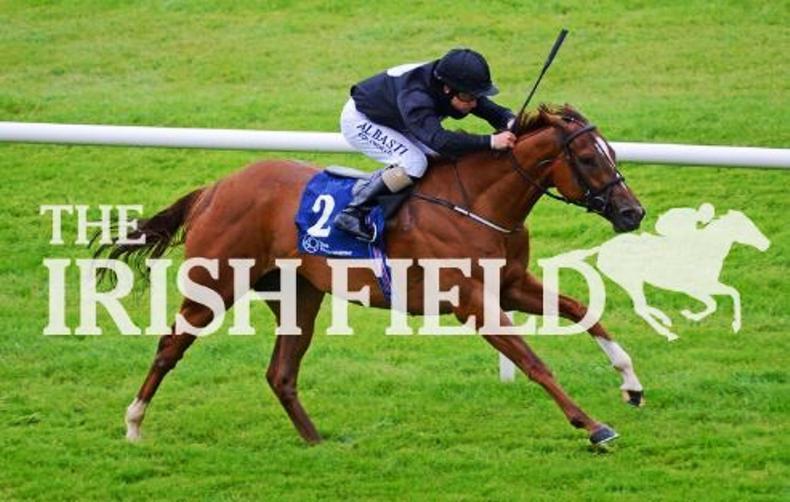 Millisle back to winning ways at Naas