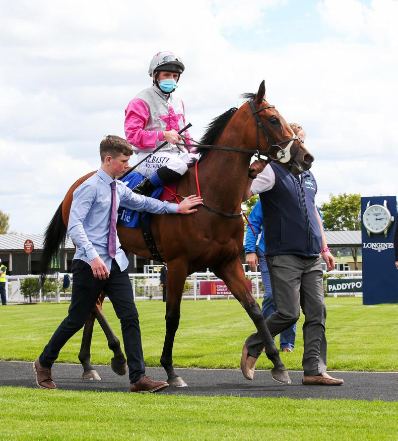 BREEDING INSIGHTS: Aloha stars for her banner sire