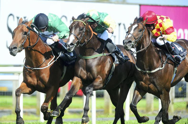 CURRAGH SUNDAY PREVIEW: Pulse can step up to the mark