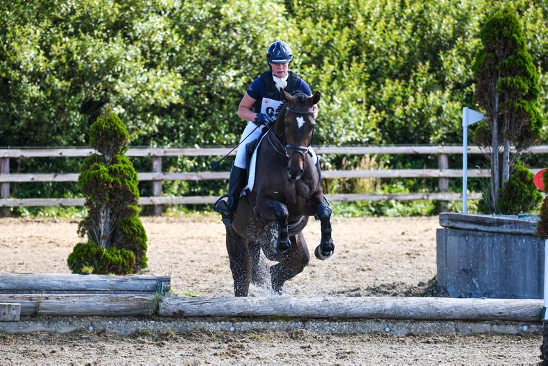 STEPPING STONES: 'Perfect start' for Codd as Stepping Stones gets underway