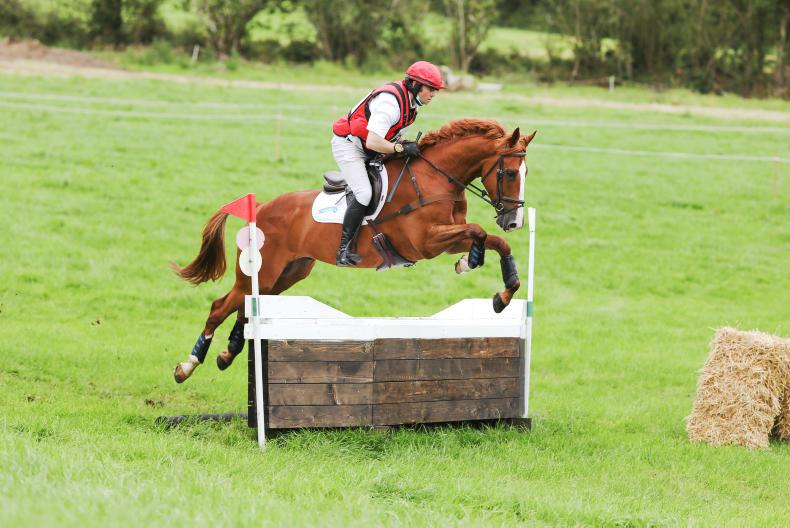 EVENTING: Sweet Rolo rewards McNally with early win