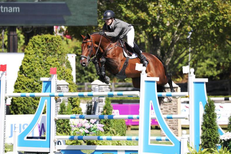 INTERNATIONAL: Irish placed in Tryon Grand Prix