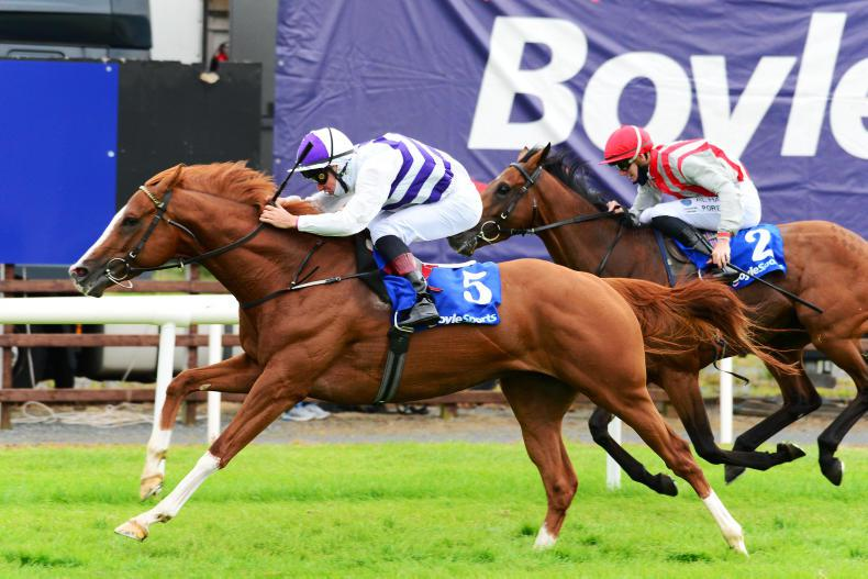 DOWN ROYAL FRIDAY: Kelly caps treble for Red hot Murtagh team