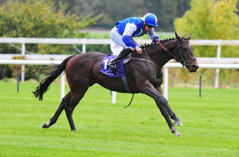 HORSES TO FOLLOW: Takarengo returning to peak form