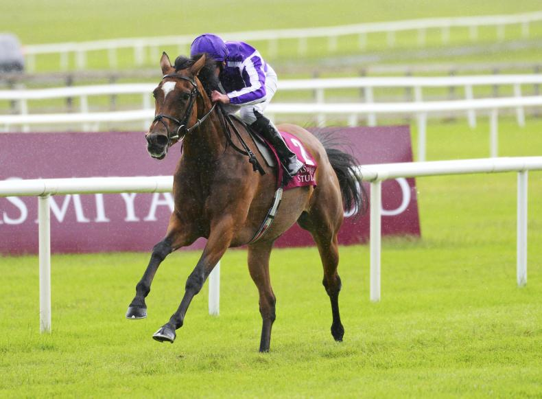 TATTERSALLS GOLD CUP PREVIEW: Magical searching for Gold Cup glory