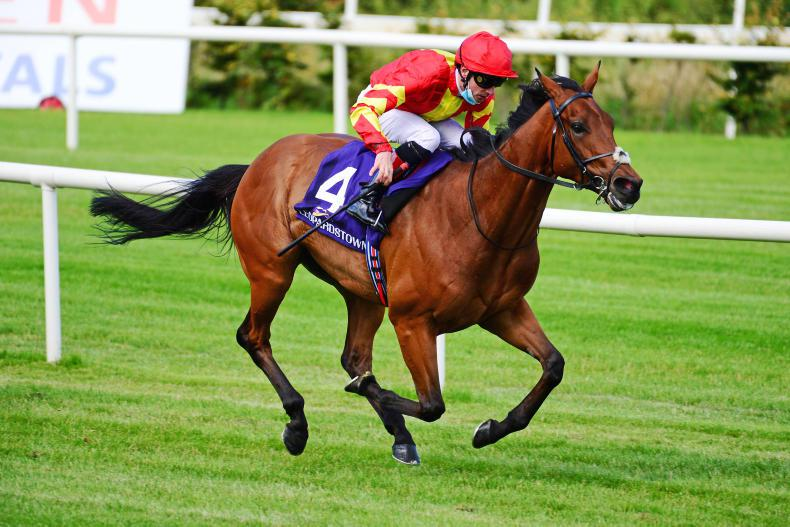GERMAN PREVIEW: Patrick Sarsfield chases Group 1 prize