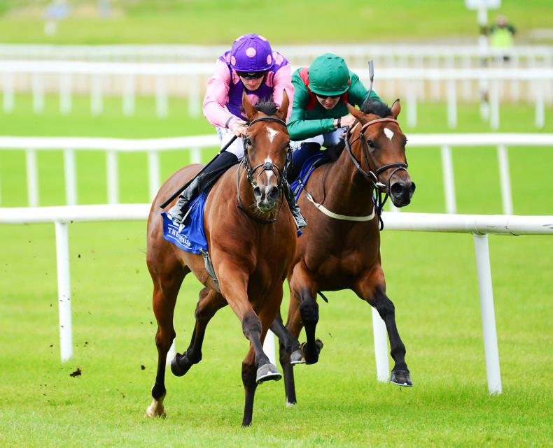 CURRAGH SUNDAY:  Beauty looks bright for Condon