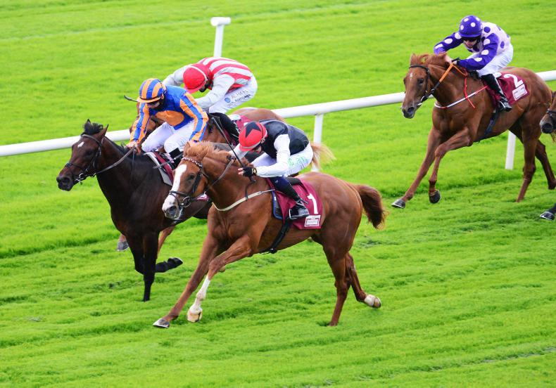 GALWAY MONDAY: Dermot Weld doubles up on day one