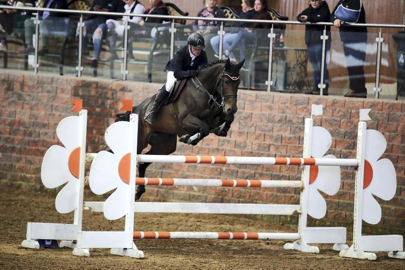 SHOW JUMPING: Carberry lands the win on Brandonview First Edition