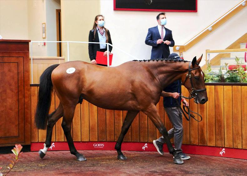 SALES: Two £80,000 stores share top billing at Doncaster Summer Sale