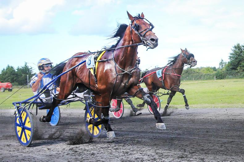 HARNESS RACING: Welcome double for Wallace at Annaghmore