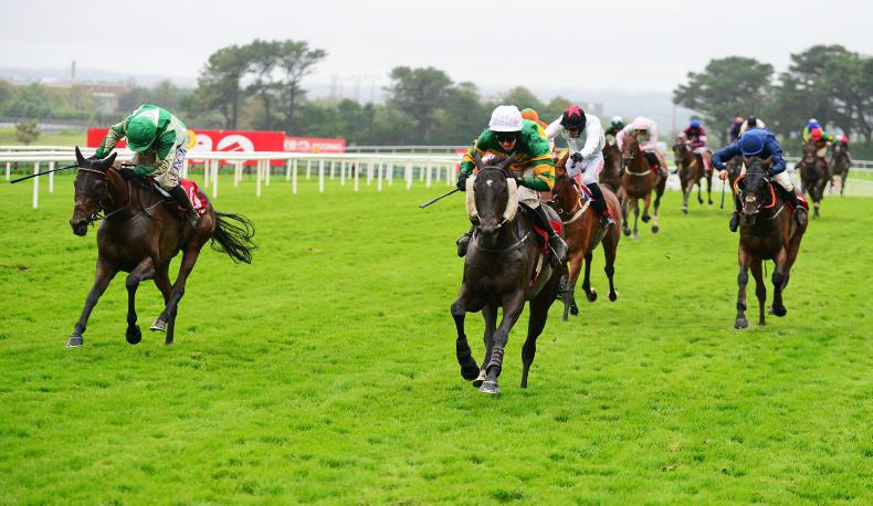 TOTE GALWAY PLATE: Early strikes late for Plate glory