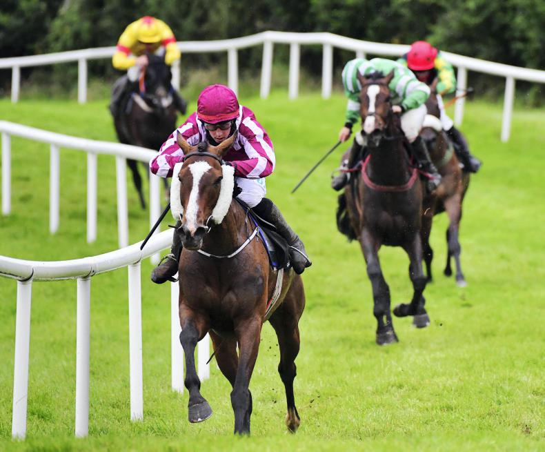 KILBEGGAN SATURDAY: Eimear earns the vote back over hurdles