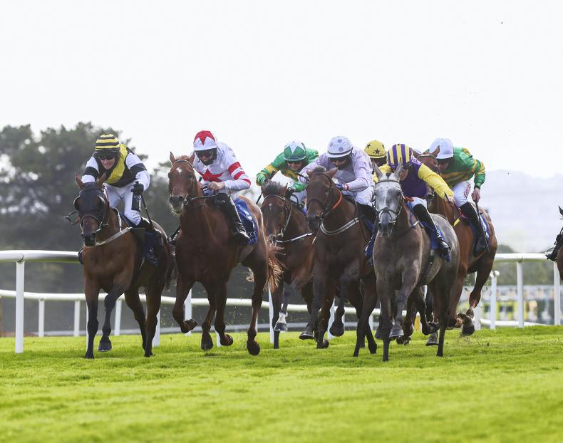 RACING CENTRAL: Zoe out to make it €100,000 in just two weeks