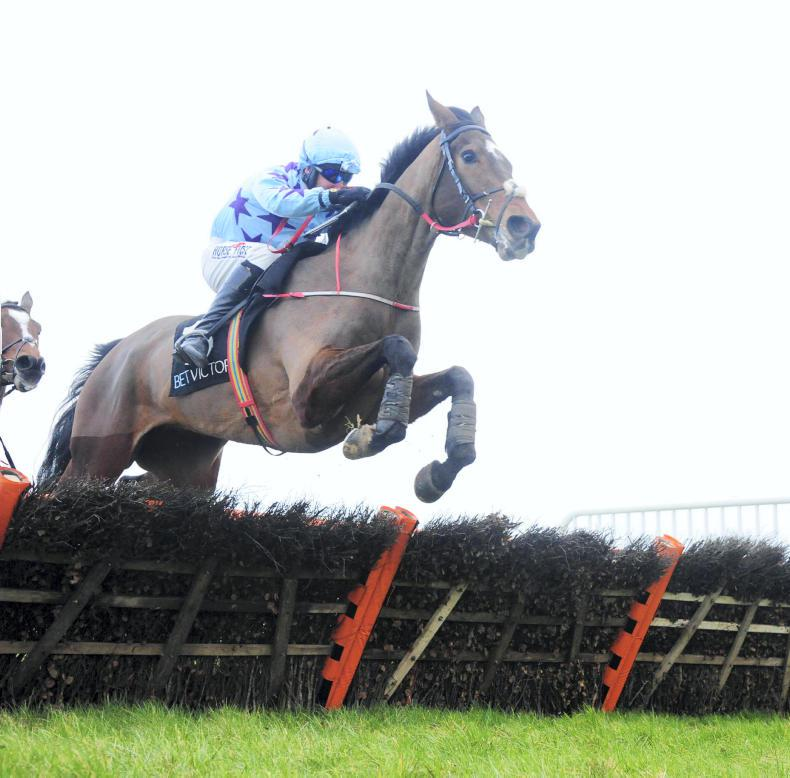 CORK SUNDAY: Go Another looks the One in three-mile hurdle