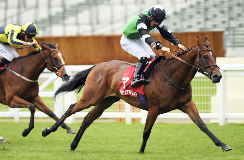 MARGIE McLOONE: Group success for Murray filly