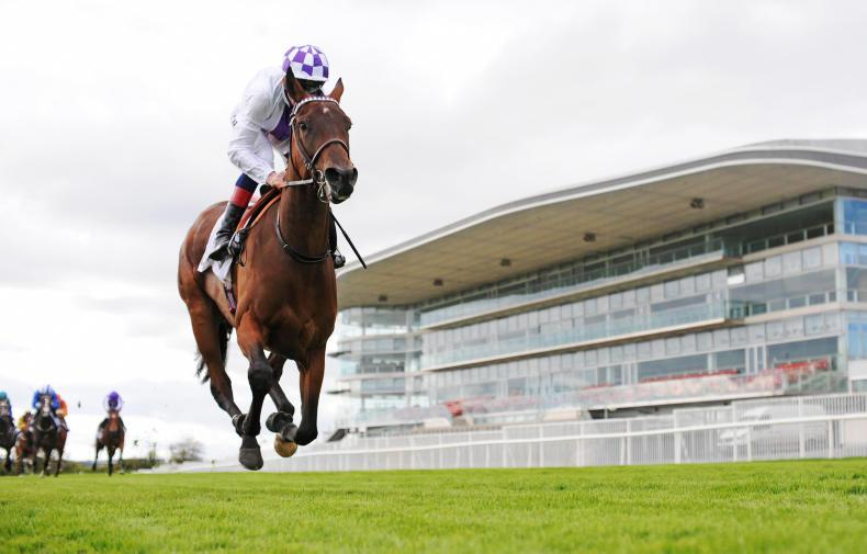 GALWAY TUESDAY: Bolger filly makes a big impression
