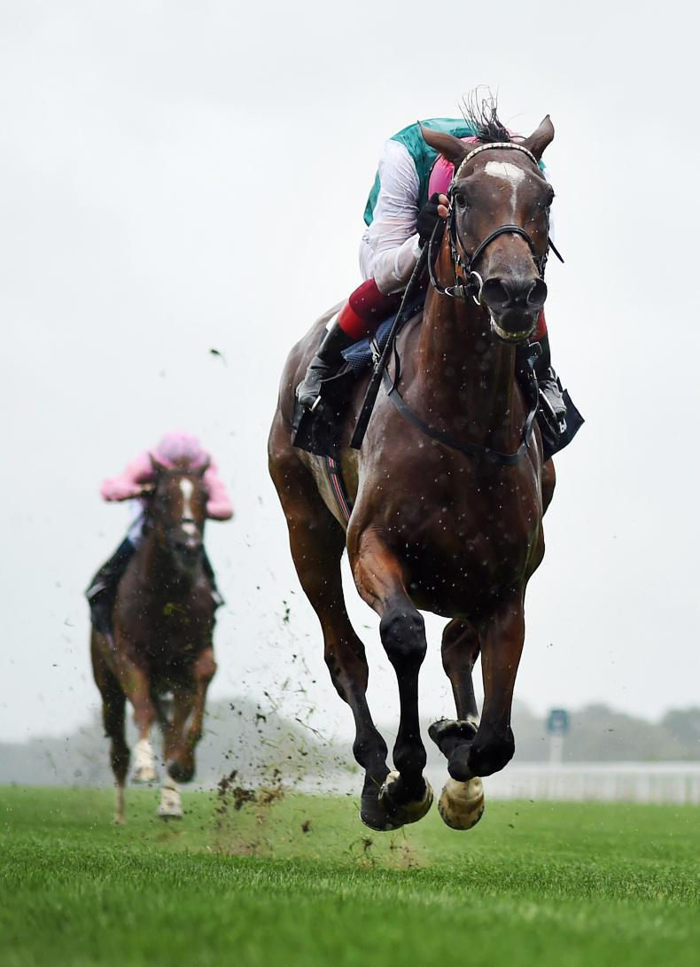 BRITAIN: Enable one of the all time greats