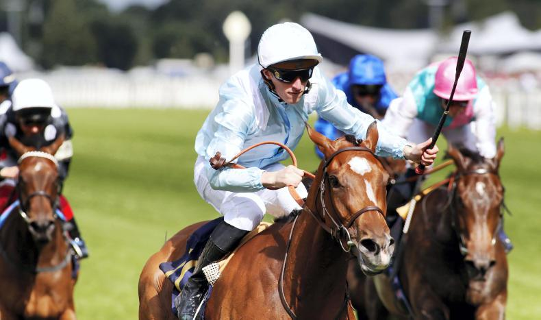 Watch Me puts up winning show in Prix Rothschild