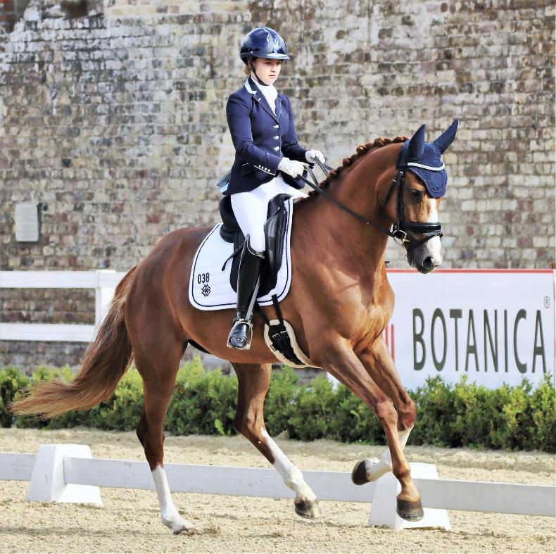 DRESSAGE: New 'Dressage in the City' show attracts riders
