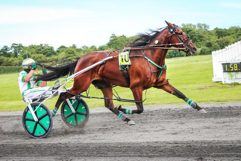 HARNESS RACING:  Youth on show at Annaghmore