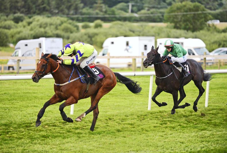 SLIGO WEDNESDAY: Sligo double provides Hogan team small compensation