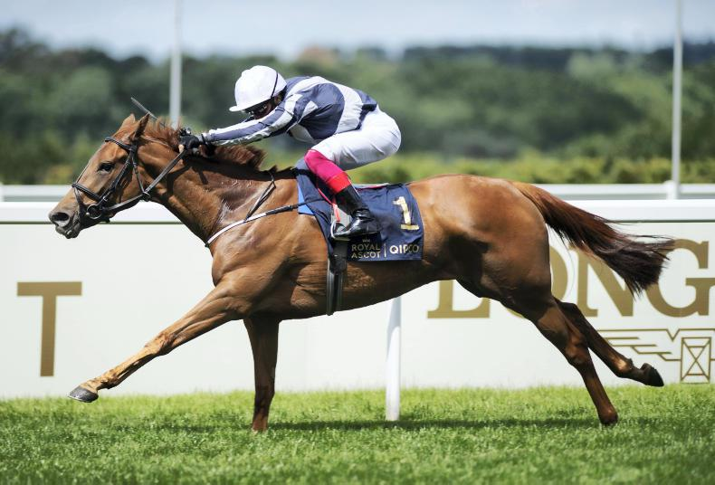Alpine Star has Deauville date on her radar