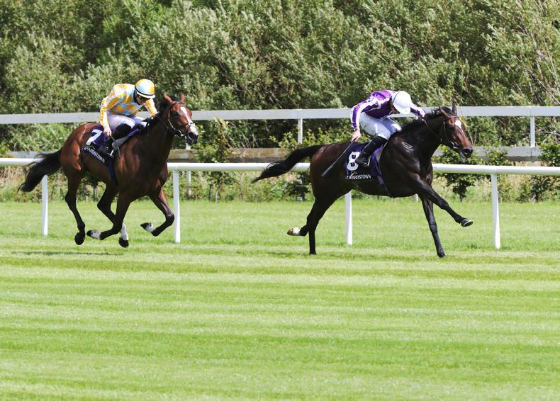 LEOPARDSTOWN THURSDAY: Shale first pattern success for Donnacha