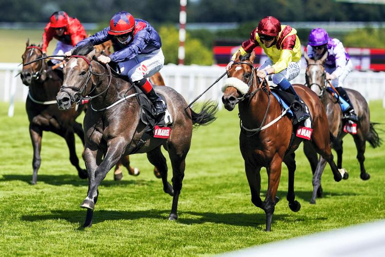 CURRAGH SUNDAY: Steel Bull to pulverise rivals