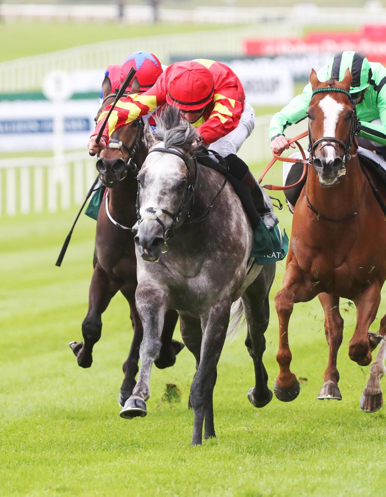 CURRAGH SUNDAY: Speak In Colours to defy penalty
