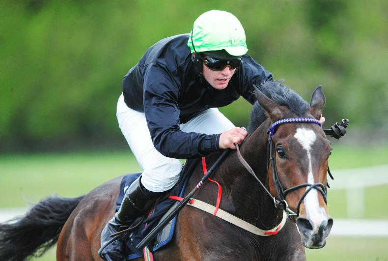 DOWNPATRICK SUNDAY PREVIEW: Golden has the stamina to come out on top