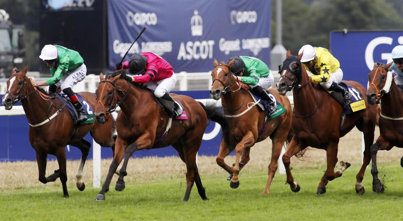 BRITISH PREVIEW: Serendipity looks the lucky one at Ascot